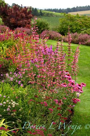 Cottage Garden_010