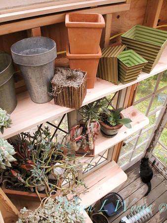 Potting shed story_048