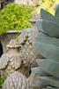 French garden finial_0571