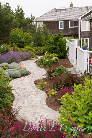 Pacific NW coastal garden path landscape_2078