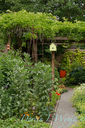 Vegetable Garden_8290