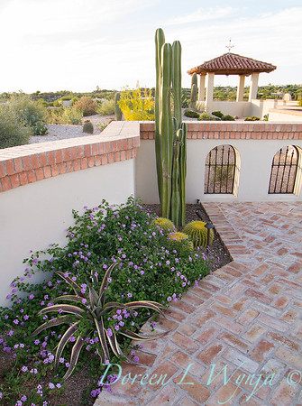 x Mangave 'Espresso'; Scott Calhoun designer; Echinocactus grusonii or golden barrel cactus with Lantana and Pachycereus marginatus; desert garden; southwestern garden; herringbone pattern brick patio; brick patio
