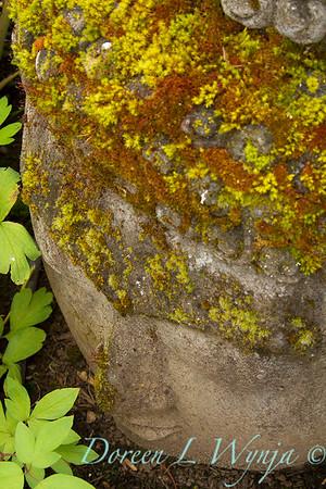 Buddha head moss covered_7608