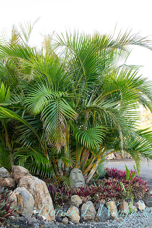 Tiki head in a tropical landscape_4980