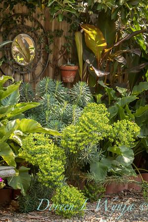 Mirror in the garden_7742AMG