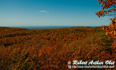 Waves of blazing autumn foliage roll from the Summit Peak Scenic Area Observation Tower to Lake Superior within Porcupine Mountains Wilderness State Park (USA MI Ontonagon)