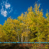 Obst FAV Photos Nikon D800 Landscapes Inspirational Autumn Beauty Image  4089