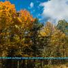 Obst FAV Photos Nikon D800 Landscapes Inspirational Autumn Beauty Image 4062