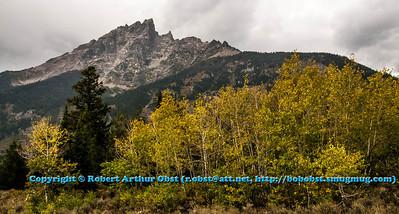 LI-AB_5936_MAT-RORP.P1.USA.WY.Moose.GrandTetonNP.AutumnBeautyEmbracesGrandTetonMountain-B (DSC_5936.NEF)