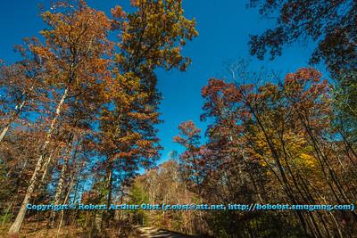 Obst FAV Photos Nikon D800 Landscapes Inspirational Autumn Beauty Image 6717