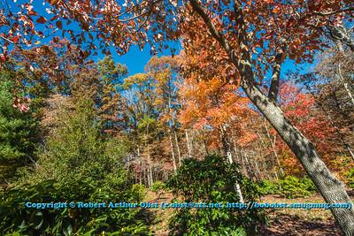 Obst FAV Photos Nikon D800 Landscapes Inspirational Autumn Beauty Image 6721