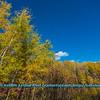 Obst FAV Photos Nikon D800 Landscapes Inspirational Autumn Beauty Image 4095