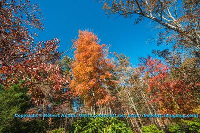 Obst FAV Photos Nikon D800 Landscapes Inspirational Autumn Beauty Image 6722