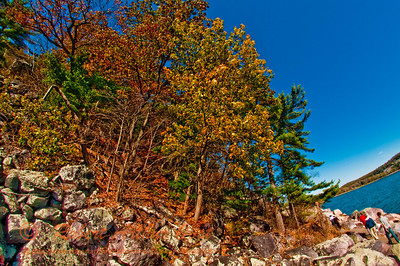Hiking Tumbled Rocks Trail past an explosion of color under cobalt autumn skies by Devils Lake within Devils Lake State Park (USA WI Baraboo)
