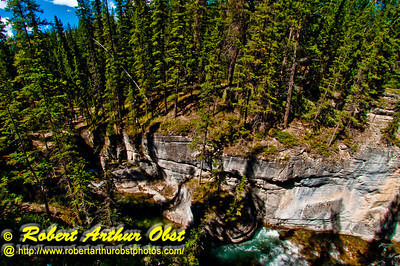 Blue skies and boreal forests embrace the dark limestone gorges of the Maligne River Canyon within Jasper National Park (Canada Alberta Jasper)