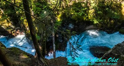 DWS-Rivers_7082_ATO.WestUSACanada2014-USA.MT.GlacierNP.AvalancheCreekGorge-B (DSC_7082.NEF)