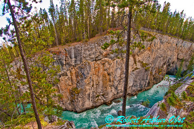 The turquoise Sunwapta River churns through a colorful limestone gorge below Sunwapta Falls within Jasper National Park (Canada Alberta Jasper)