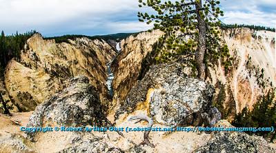 LI-Canyons_1036_USA.WY.YellowstoneNationalPark.FromArtistPoint.ViewUpriverofLowerFallsofYellowstoneRiver-B  (DSC_1746.NEF)