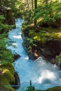 LI-Canyons_7074_ATO.WestUSACanada2014-USA.MT.GlacierNP.AvalancheCreekGorge-B (DSC_7074.NEF)