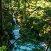 LI-Canyons_7079_ATO.WestUSACanada2014-USA.MT.GlacierNP.AvalancheCreekGorge-B (DSC_7079.NEF)