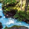 LI-Canyons_7072_ATO.WestUSACanada2014-USA.MT.GlacierNP.AvalancheLakeArea.AvalancheCreekTrail.AvalancheCreekGorge-B (DSC_7072.NEF )