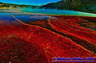 Hiker's view of Grand Prismatic Spring radiating red within Yellowstone National Park (USA WY YNP)