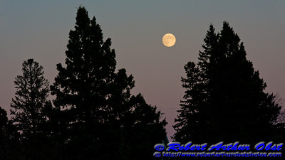 Full moon rises in a gorgeous pink sky over Kielcheski residence east of Wolf River Refuge Access Road at sunset (USA WI White Lake Langlade; RAO 2012 Nikon D800 Image 6623)