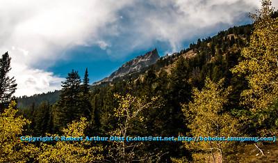 LI-Mountains_5947_MAT-RORP.P1.USA.WY.Moose.GrandTetonNP.HikersViewOfJennyLake-B (DSC_5947.NEF)