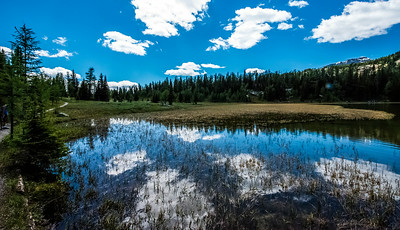 LI-Reflections_7566_ATO.WestUSACanada2014-CAN.AB.SunshineVillage.BanffNP.SunshineMeadows.GardenPathCreek.GrizzlyLake-B (DSC_7566.NEF)
