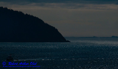 A lonely Alaskan fishing boat crusing through evening light over blue seas between Glacier Bay and College Fjord in the Gulf of Alaska (USA Alaska Gustavus)