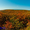 Hiker's view of blazing autumn foliage and blue skies over Lake Superior from the Summit Peak Scenic Area within Porcupine Mountains Wilderness State Park (USA MI Ontonagon)