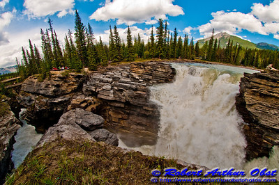 Sunwapta River churns through a limestone gorge below Sunwapta Falls within Jasper National Park (CAN Alberta Jasper)
