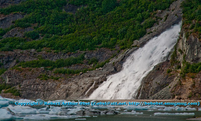 Nugget Falls drops into Mendenhall Lake at the base of Mendenhall Glacier within Tongass National Forest (USA Alaska Juneau)