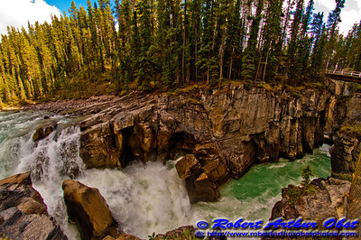 The turquoise Sunwapta River churns into a granitic gorge below Sunwapta Falls within Jasper National Park (CAN Alberta Jasper)