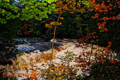Autumn color frames the Presque Isle River's Nawadaha Falls within Porcupine Mountains Wilderness State Park (USA MI Ontonagon)