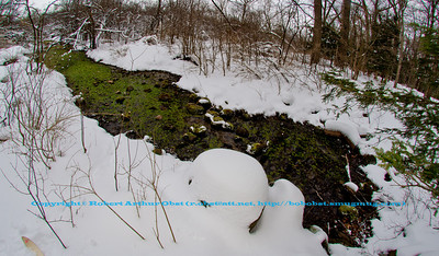Cross country skier's winter view of a serpentine emerald tributary of Lake Wingra near Big Spring within the University of Wisconsin Madison Arboretum (USA WI Madison; Obst FAV 2013 Landscapes Inspirational Nikon D800 Image 7881)