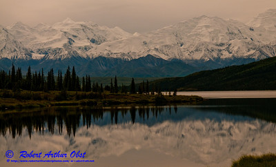 Beautiful reflections of Denali or Mount McKinley and its forests in Wonder Lake within Denali National Park (USA Alaska Denali Park)