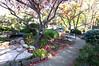 Autumnleaves on the garden path