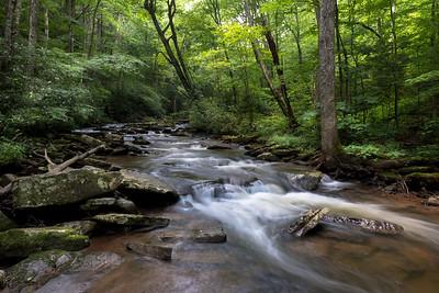 Hills Creek, WV