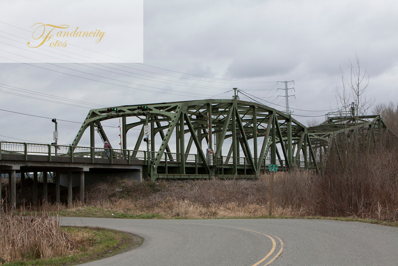 Bride over Snohomish