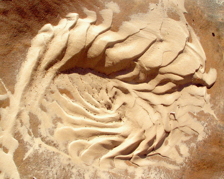 Sand Patterns<br /> <br /> Recommended Sizes: 4 x 5, 8 x 10, 16 x 20
