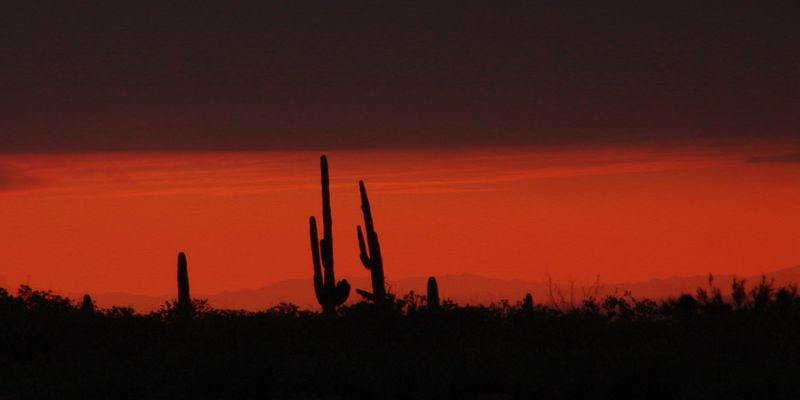 Lost Dutchman State Park, Arizona<br /> <br /> Recommended sizes: 8 x 12, 16 x 24