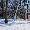 Winter's Last Hurrah