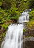 Marys Peak, Oregon May 28, 2010