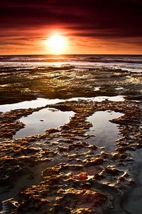 Del Mar Tidepools, 1/13/2013