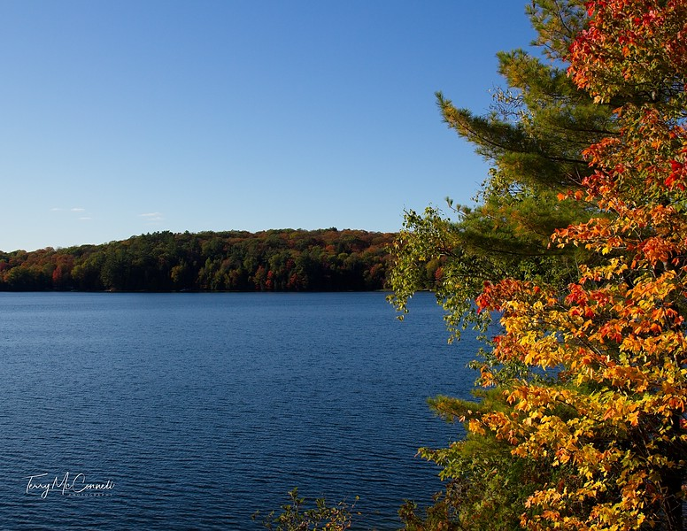 Lake of Bays Fall Colours