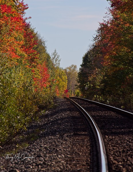 Railway Tracke on the Road to Torrence Barrens,