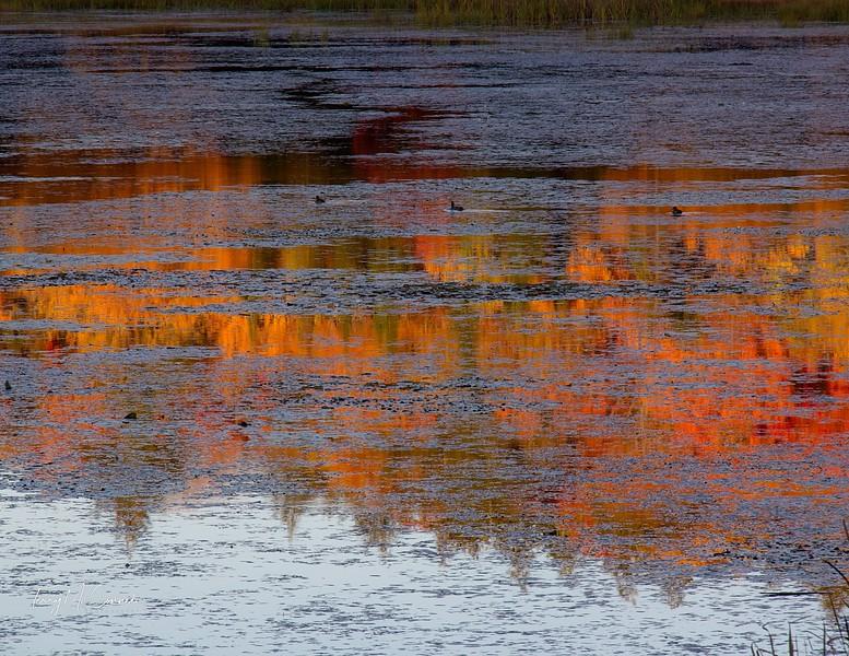 Lake on  Huntsville