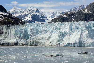 margerie glacier beautiful day