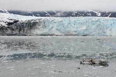 cloudy day glacier